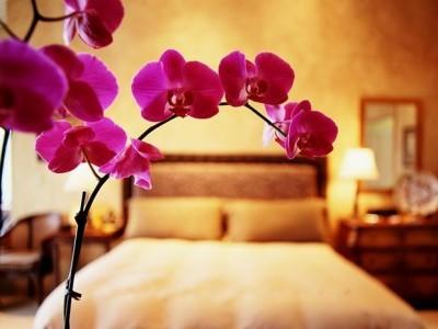Feng-Shui-camera da letto